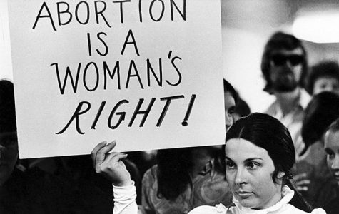 Congress members file amicus brief in hopes of overturning Roe v. Wade